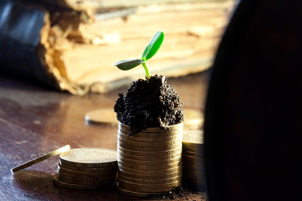 Инвестирование в земельные участки
